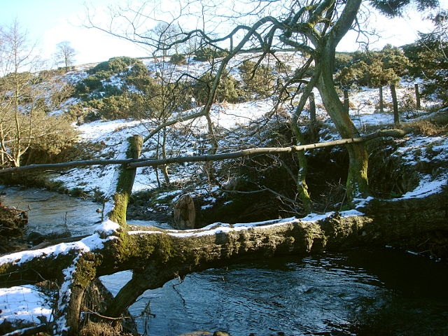 Tree_bridge_over_the_River_Gaunless_-_geograph_org_uk_-_1704823
