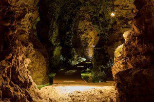 Mønsted_Kalkgruber_Illuminated_path_with_two_lightghosts_2014-07-17