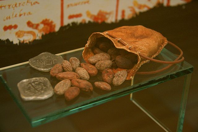 leather bag in museum exhibit opened to allow cacao beans and old square silver coins to emerge