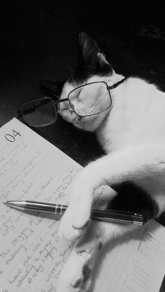 """White cat with black ears who has fallen asleep wearing a human-sized pair of glasses and """"holding"""" a pen, lying on a page in someone's datebook"""